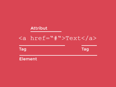 Attribut, Element und Tag in HTML